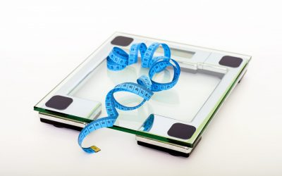 Why Building An Online Business Is Like Losing Weight